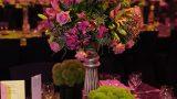indoors-event-images-zivdali-109-686x1030