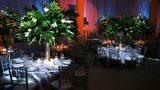 indoors-event-images-zivdali-115-1030x687