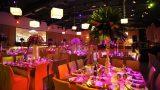 indoors-event-images-zivdali-139