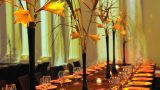 indoors-event-images-zivdali-14