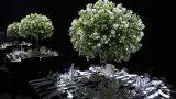 indoors-event-images-zivdali-39-1030x686
