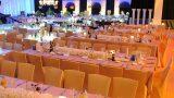 indoors-event-images-zivdali-44